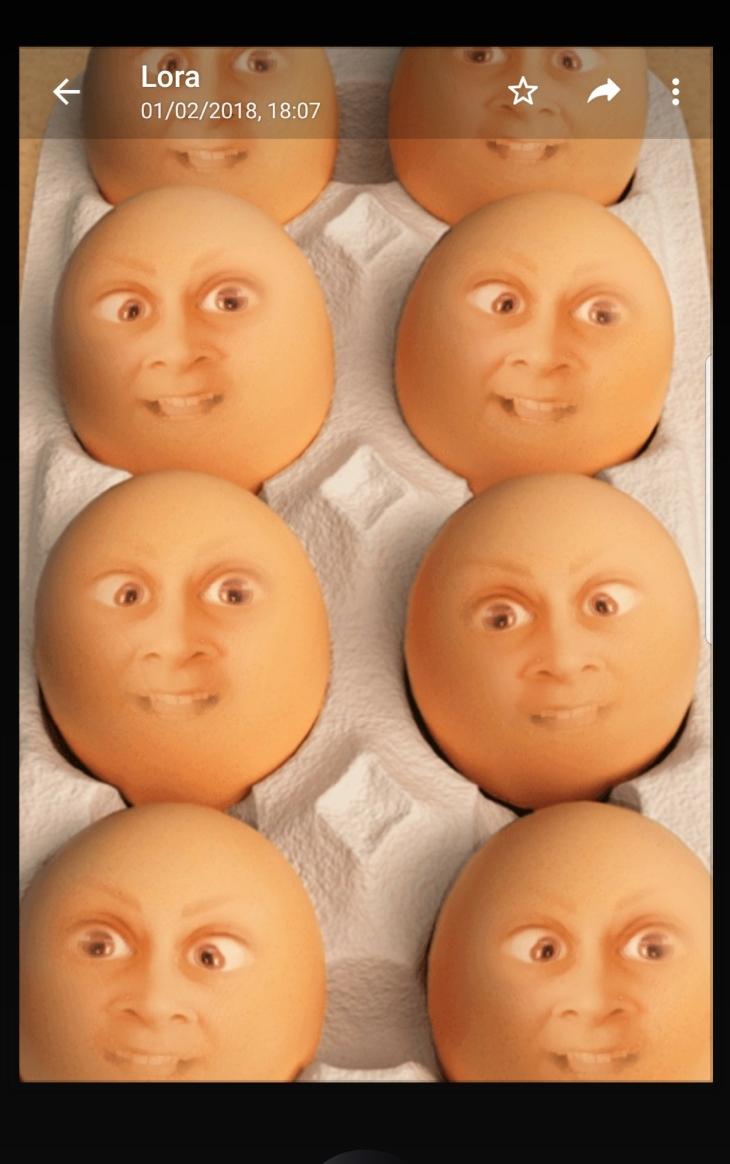 lora eggs - use