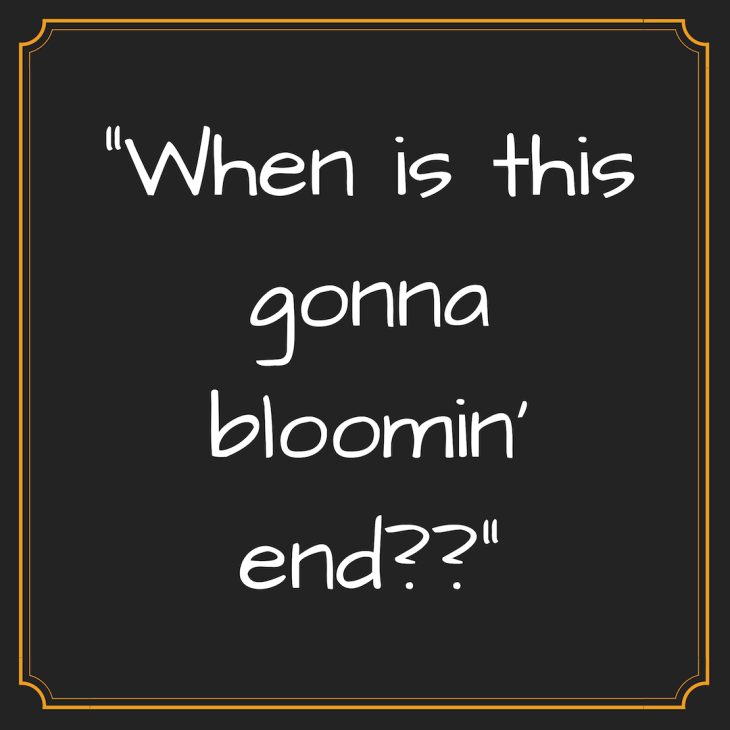 Bloomin' end